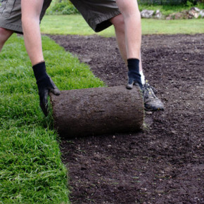 Как своими руками уложить готовый рулонный газон