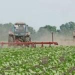 Устойчивость сорняков к гербицидам