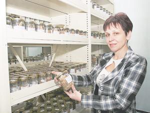 Национальная коллекция генетических ресурсов растений Украины