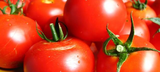 Когда сеять помидоры на рассаду в 2013 году