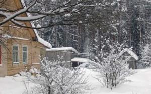 Подготовка участка к зиме