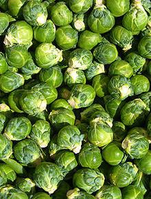 Как защитить брюссельскую капусту от болезней и вредителей