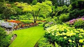 Ландшафтный дизайн в стиле кантри