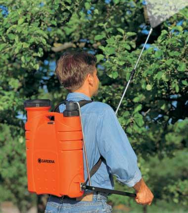 плодовых деревьев:борьба с