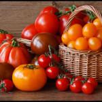 Лучшие сорта томатов 2013:самые новые сорта помидоров