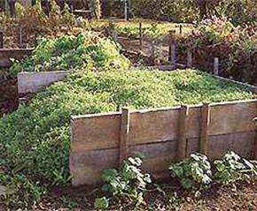 Компостирование:способы использования в компостной кучи или на грядках
