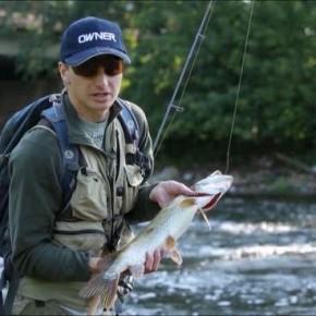 Рыбалка :природа,вода,удочка