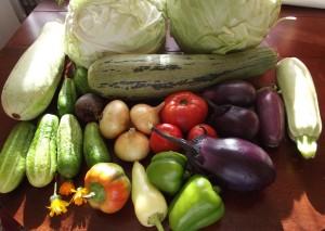 Способ вырастить овощи без ядохимикатов