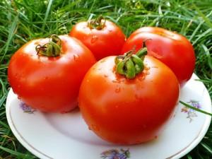 Как сохранить помидоры свежими до новогодних праздников