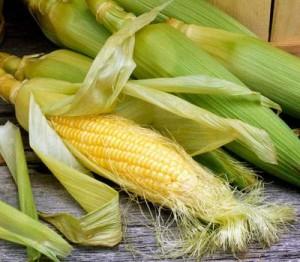 Красная кукуруза очень полезна при диабете и ожирении
