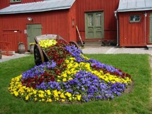 Цветник на приусадебном участке