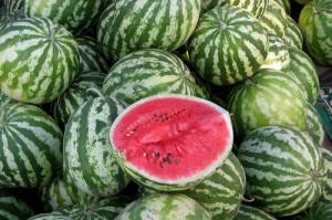 Секреты выращивания арбузов на приусадебном участке