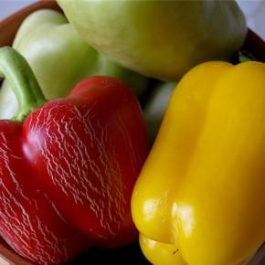 Сладкий перец сорта  Сокровище - созревает через 90 дней после появления всходов