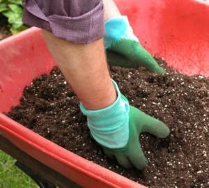 Как делать известкование почвы?