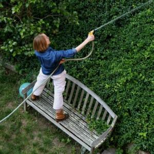 Когда нужно поливать сад