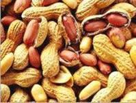 Выращивание арахиса-