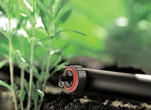Какой способ полива растений выбрать,чтобы получить максимум пользы?