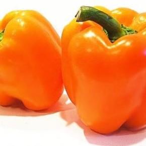 Сладкий перец : сорт Колобок созревает очень рано