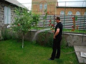 Полив растений на грядках