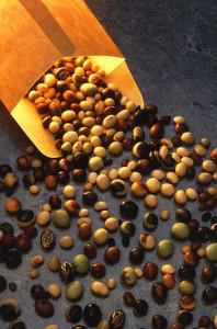 Профессиональные семена