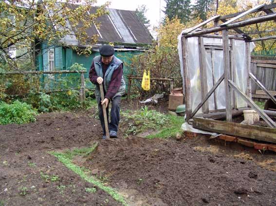 подготовка почвы к зиме