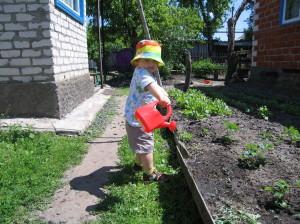 Как поливать огород осенью