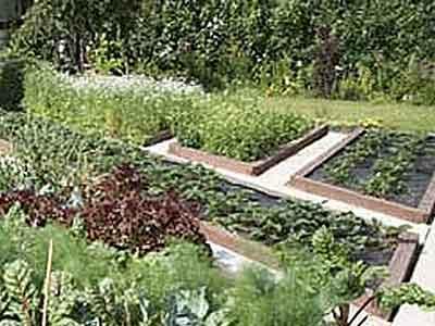Органичне земледелие