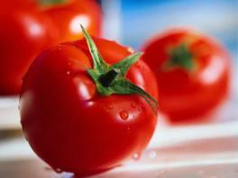 Как защитить томаты от поражения болезнями