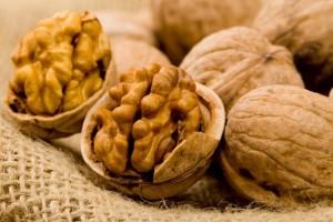 Где зимой можно найти богатейший источник питательных веществ и витаминов?