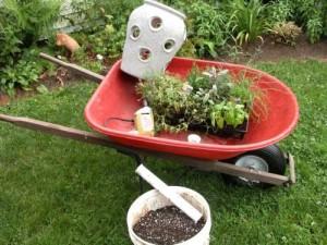 Жидкий компост - удобрение , приготовленное из травы