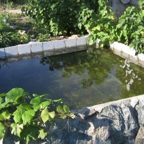 Как экономно поливать огород ?