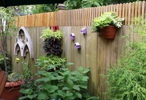 Как подобрать растения для миксбордера:советы биолога