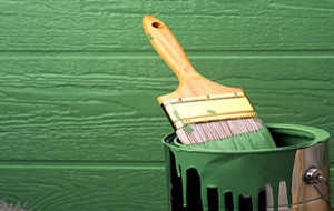 Как избавиться от плесени и грибков на стенах