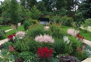 Грядка для доращивания рассады цветов перед посадками