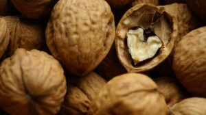 Ореховая тля:методы борьбы с вредителем