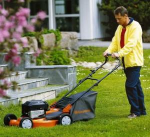 Технические характеристики и уровень цен газонокосилок