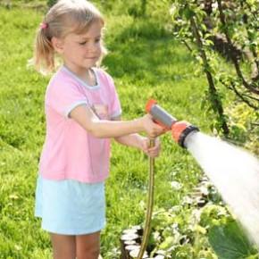 Сколько раз надо поливать плодовые деревья?