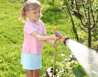 Сколько раз надо поливать плодовые деревья