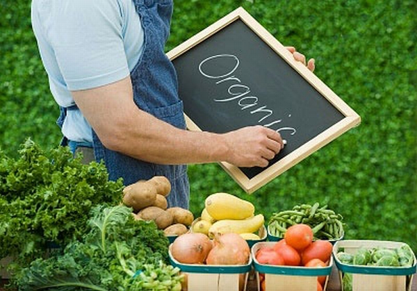 20- е место в мире по объемам производства органических продуктов питания