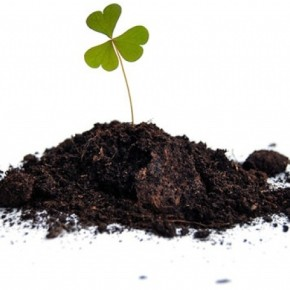Как известковать кислую почву?