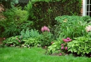 Какими удобрениями подкармливать газон осенью?