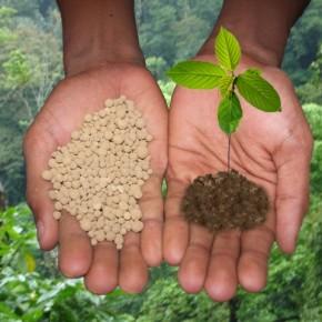 Предпосевное ( передпосадочное ) удобрение :как применяют минеральные удобрения