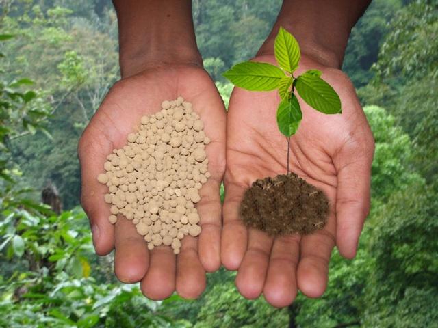 Какие минеральные удобрения снижают кислотность почвы
