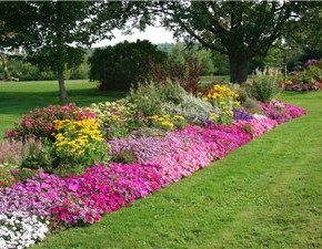 Октябрь - лучший месяц для посадки и пересадки декоративных кустов и плодовых деревьев