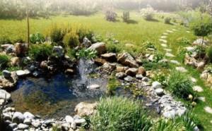 Как устроить красивый водоём на участке