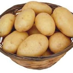 Украинский картофель:характеристика сорта Гурман