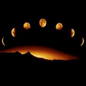 Работы на дачном участке в ноябре по лунному календарю:характеристика по дням