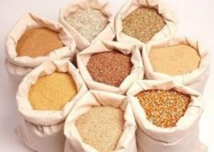 Какие удобрения лучше всего использовать для нечерноземной почвы