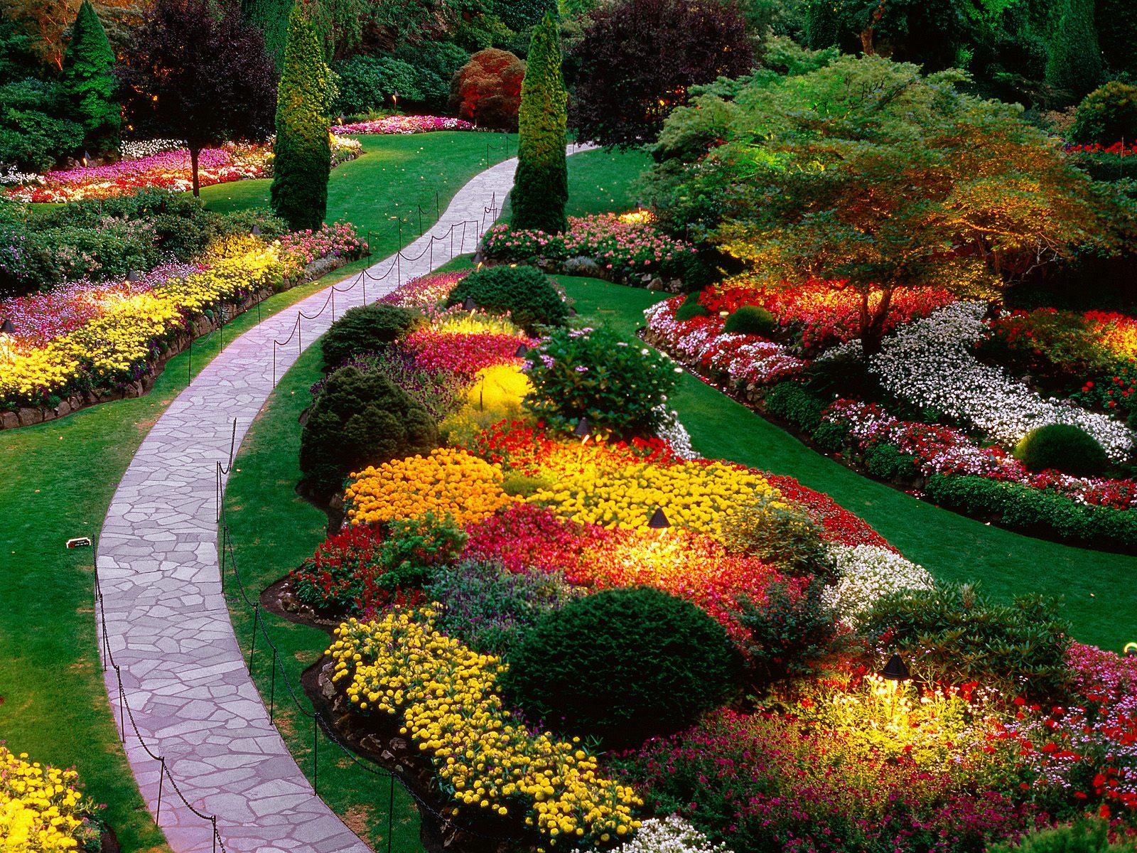 Как сделать красивый сад своими