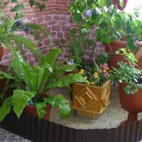 Как правильно поливать комнатные растения зимой?